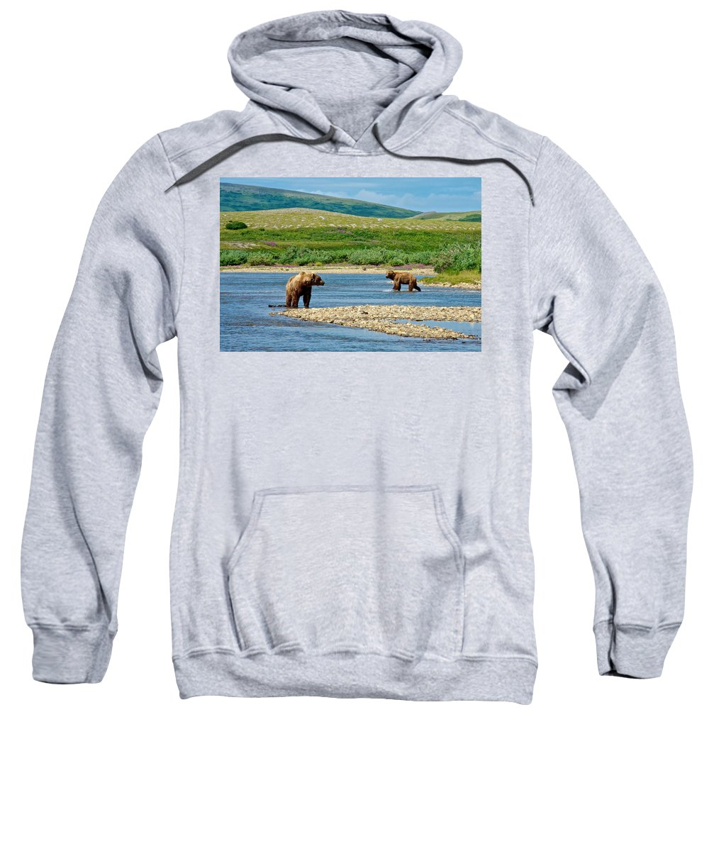Grizzly Bear Communication Sweatshirt featuring the photograph Grizzly Bear Communication In The Moraine River In Katmai Np-ak by Ruth Hager