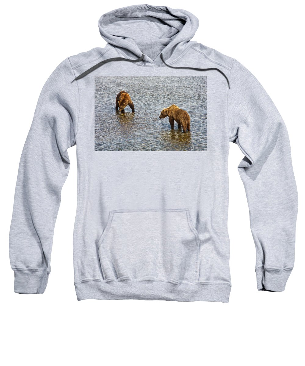 Grizzly Bears Looking For Salmon Sweatshirt featuring the photograph Grizzly Bears Looking For Salmon In Moraine River In Katmai Np-ak by Ruth Hager