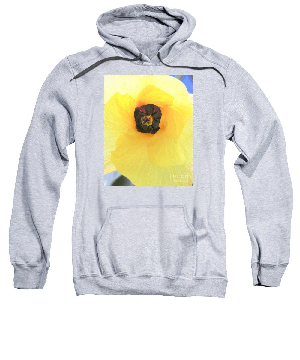 Hau Blossom Sweatshirt featuring the photograph Hau Blossom by Mary Deal