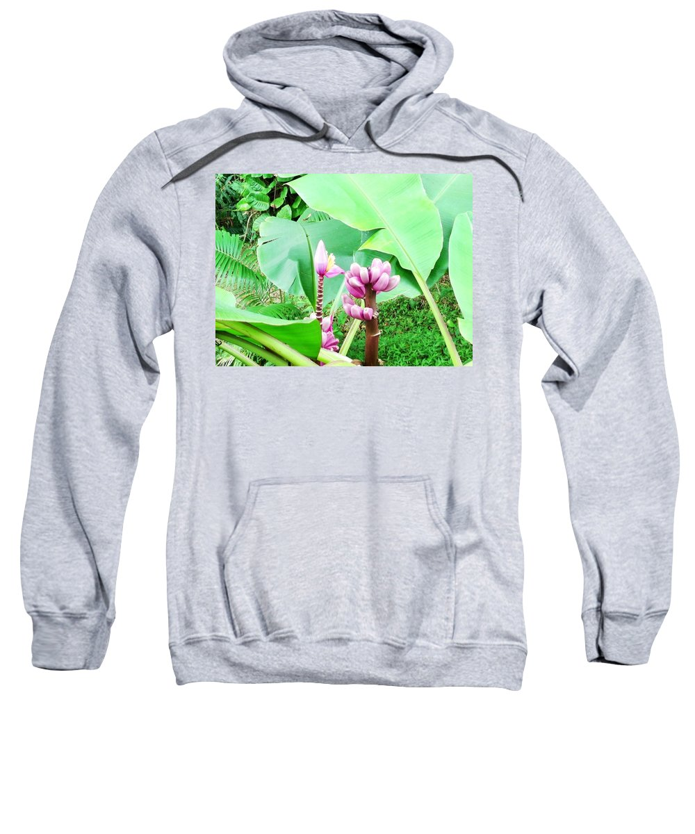 Hawaiiana Sweatshirt featuring the digital art Hawaiiana 22 by D Preble