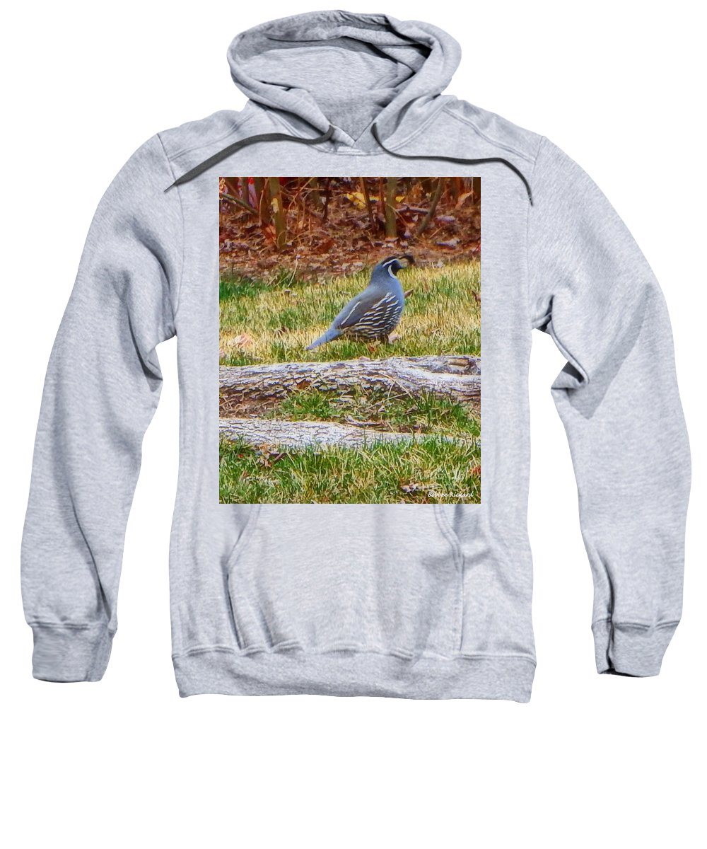 Acrylic Prints Sweatshirt featuring the photograph Quail Scout by Bobbee Rickard