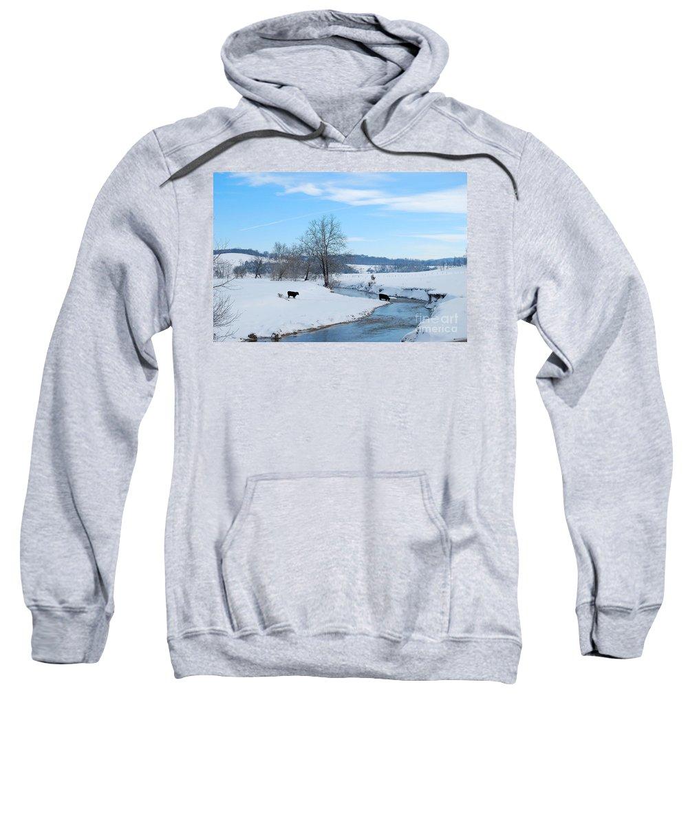 Hays Creek Sweatshirt featuring the photograph Hays Creek Winter by Todd Hostetter