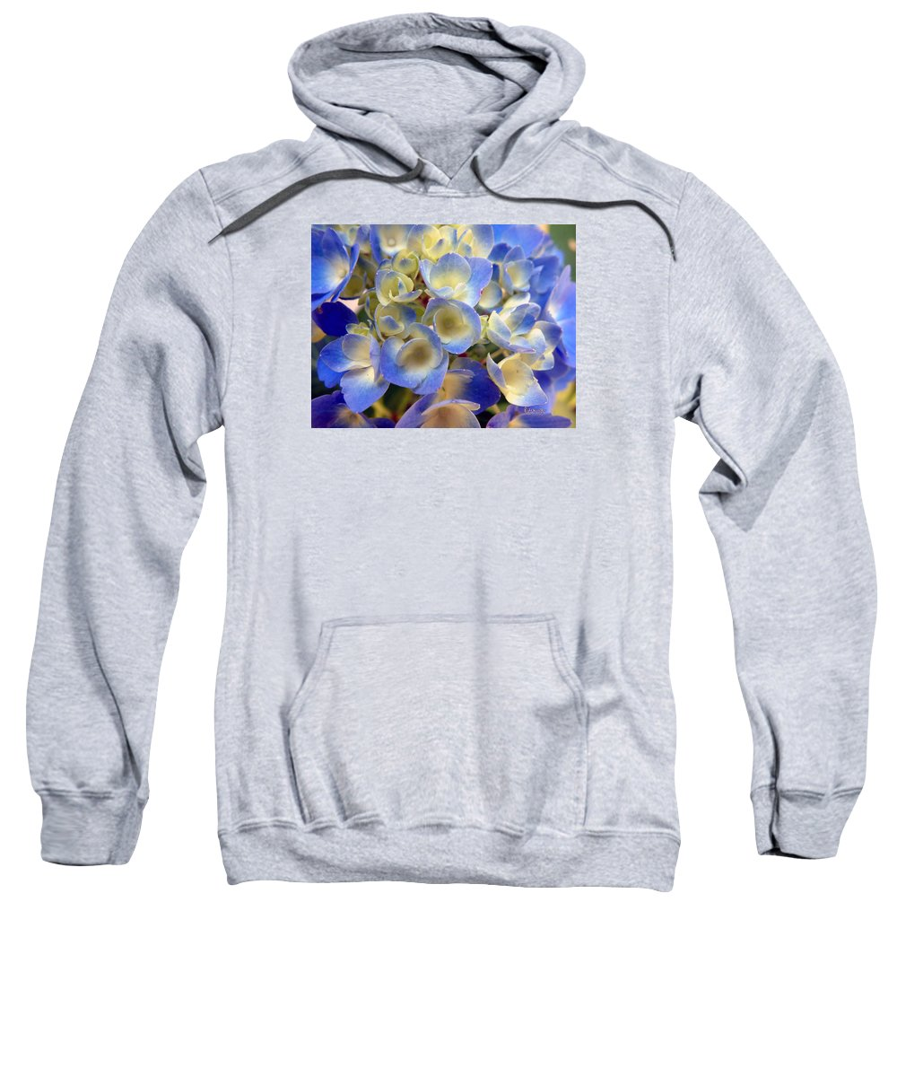 Floral Sweatshirt featuring the photograph Heavenly Blues by RC deWinter