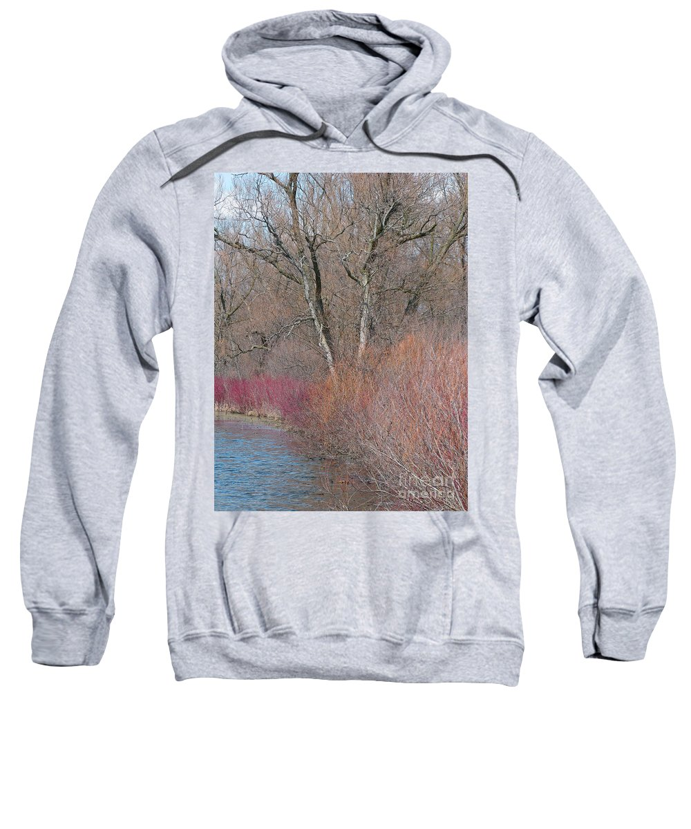 Spring Sweatshirt featuring the photograph Hint Of Spring by Ann Horn