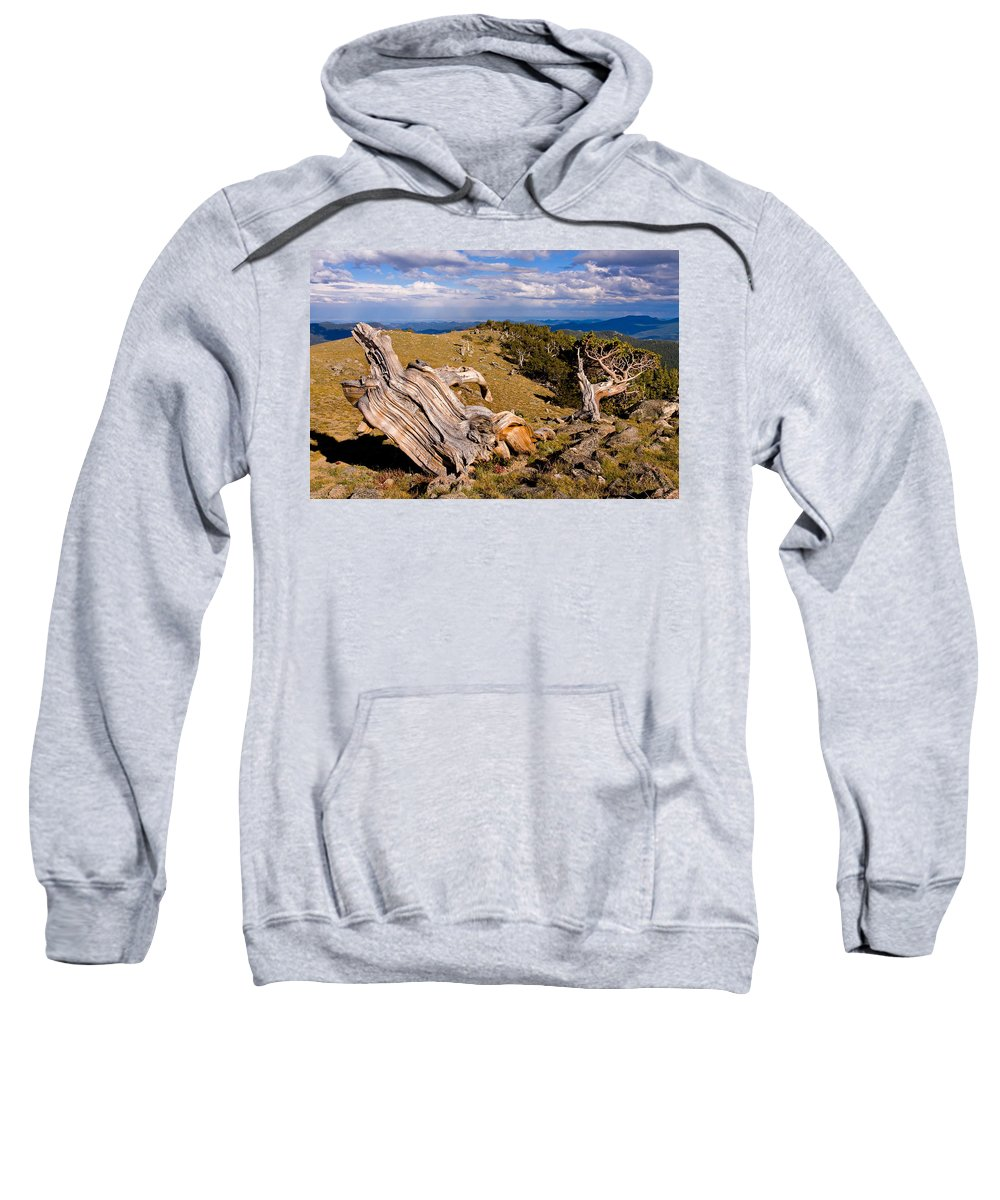 Bristlecone Pine Photograph Sweatshirt featuring the photograph Hoe-down At The Top Of The World by Jim Garrison