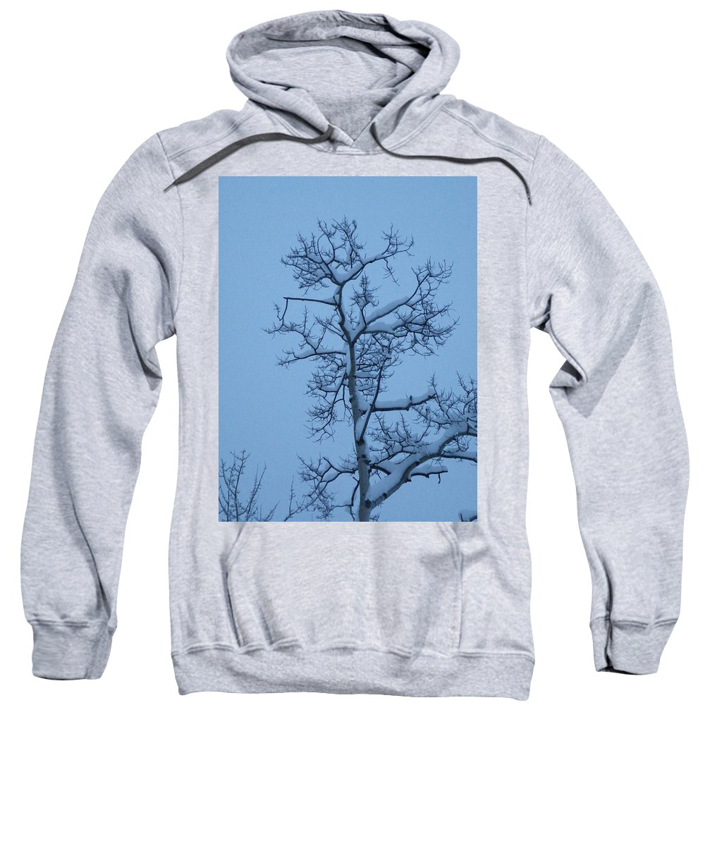 Aspen Sweatshirt featuring the photograph Holding by Brian Boyle