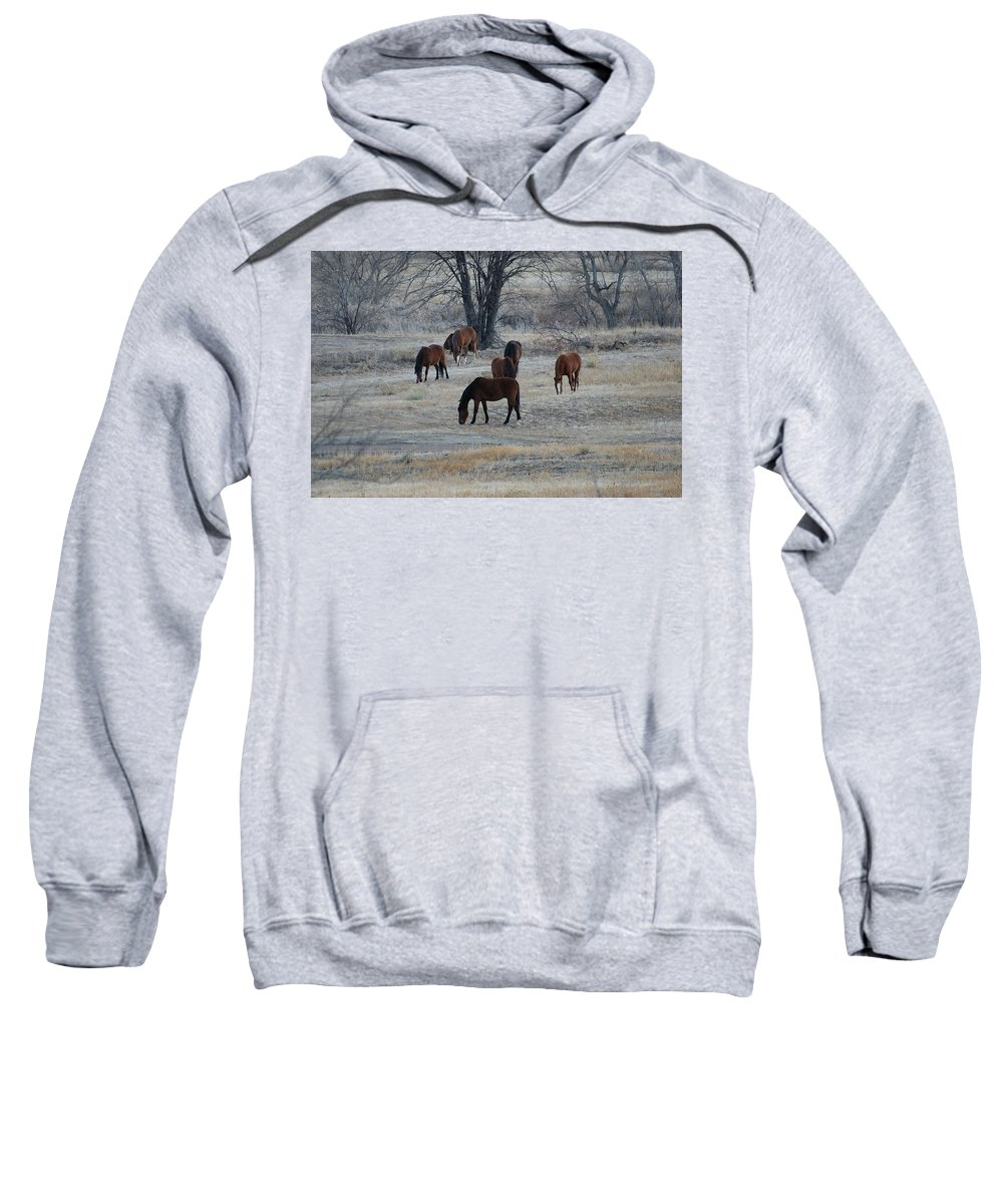 Fields Sweatshirt featuring the digital art Horses by Ernie Echols