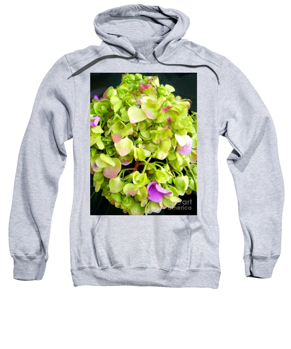 Hortensia Sweatshirt featuring the photograph Hortensia With Touch Of Pink by Nina Ficur Feenan