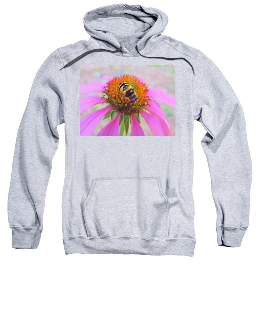 Hover Fly Sweatshirt featuring the photograph Hover Fly On Purple Coneflower by Kathryn Lund Johnson