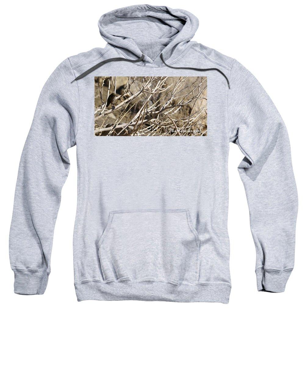 Hummingbird Sweatshirt featuring the photograph Hummingbird by Barbara Snyder