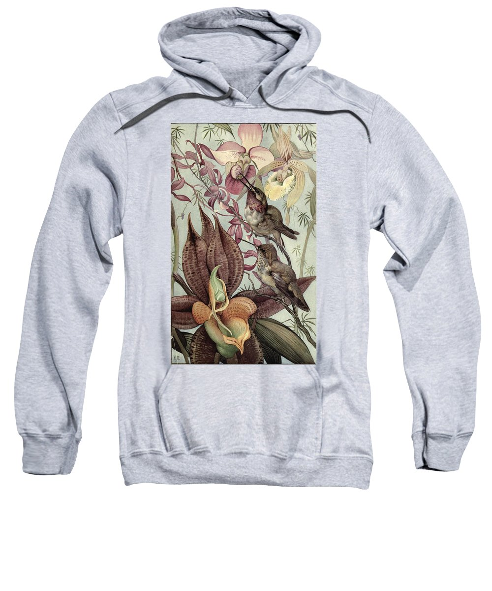 Hummingbirds Sweatshirt featuring the painting Hummingbirds And Orchids by Philip Ralley