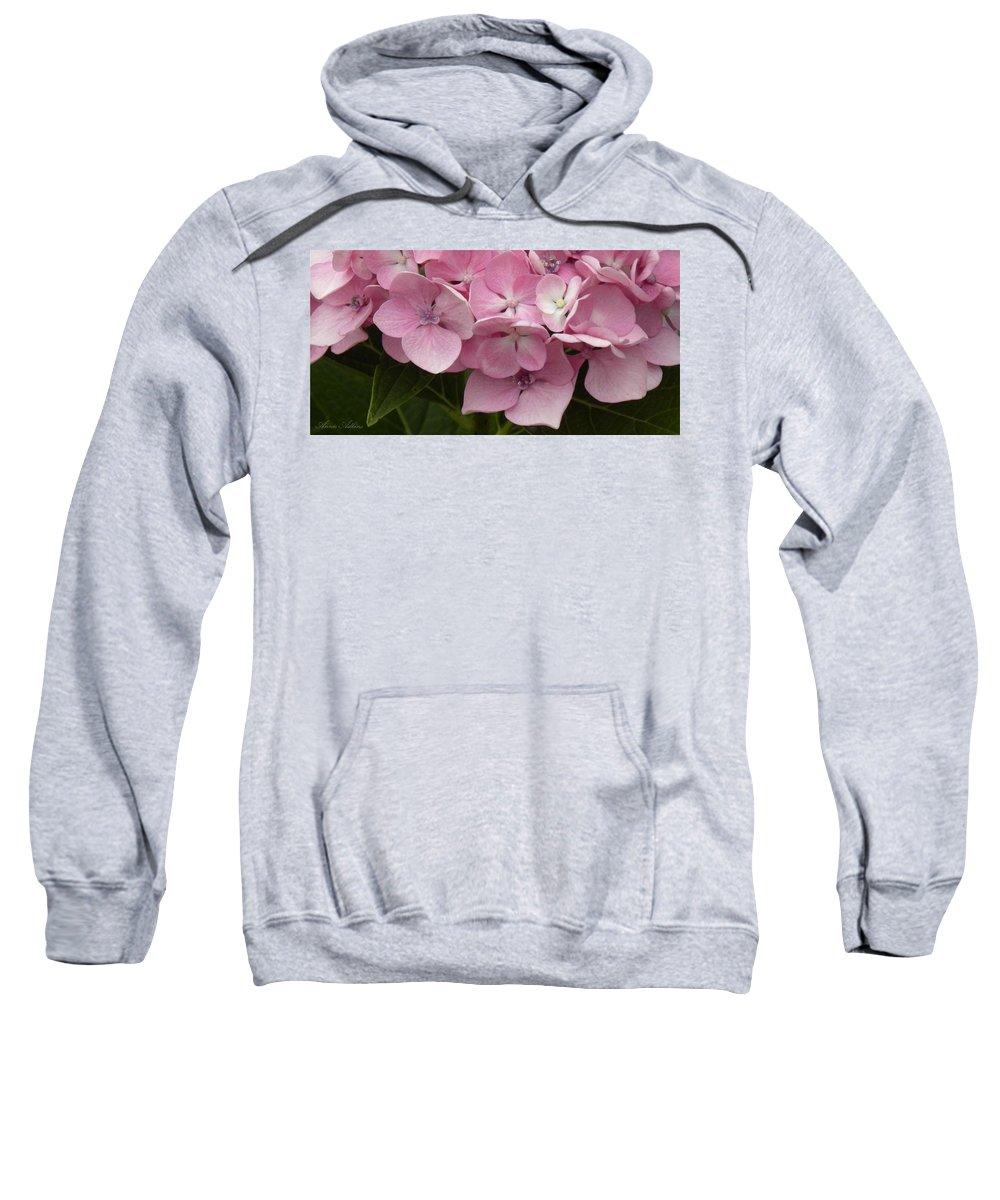 Hydrangea Sweatshirt featuring the photograph Hydrangea by Annie Adkins