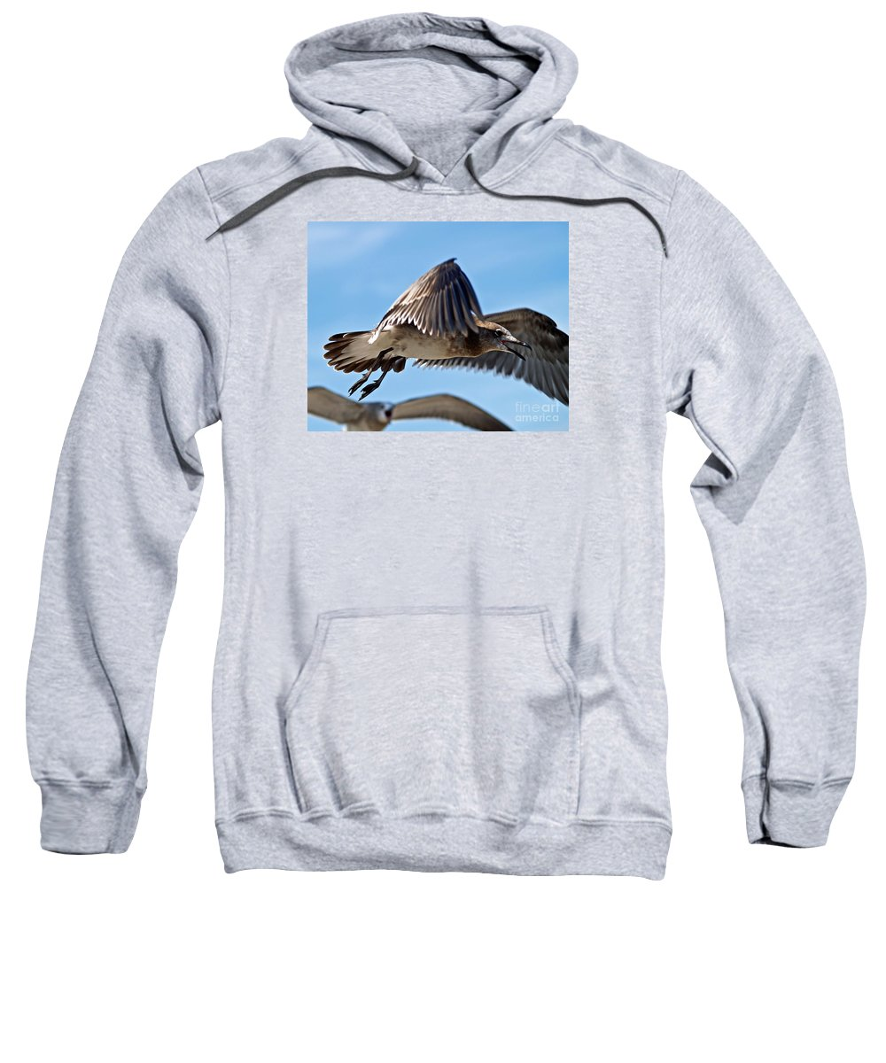 Fine Art Photography Sweatshirt featuring the photograph I Saw It First by Patricia Griffin Brett