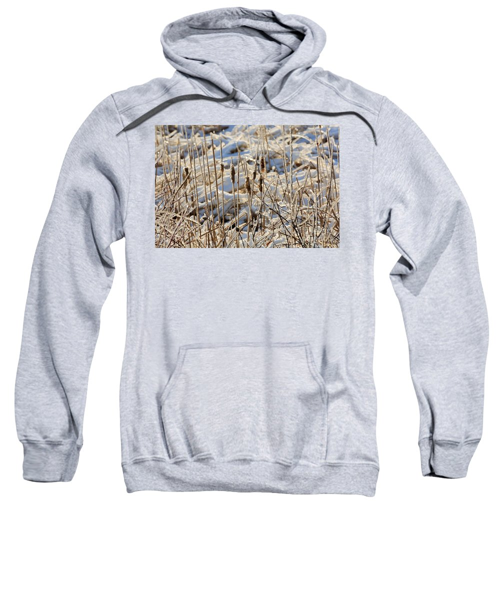 Ice Sweatshirt featuring the photograph Ice Coated Bullrushes by Louise Heusinkveld