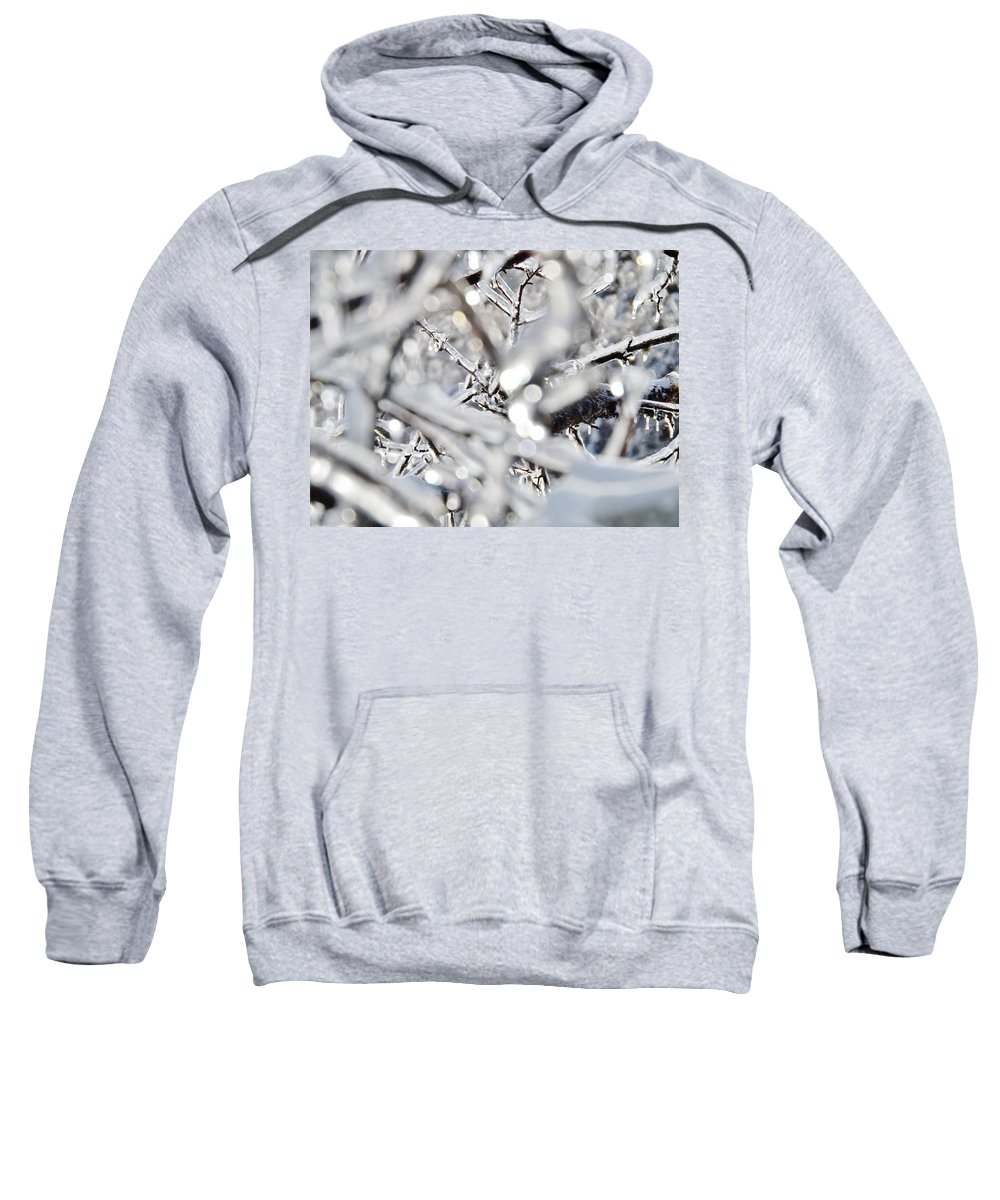 Macro Sweatshirt featuring the photograph Iced Branches by Samuel Forestell Photography