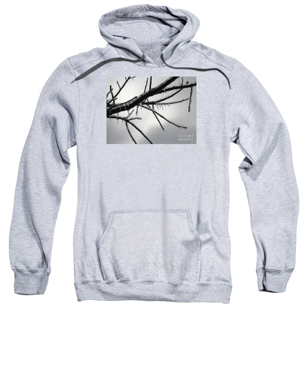 Winter Sweatshirt featuring the photograph Iced Tree by Ann Horn