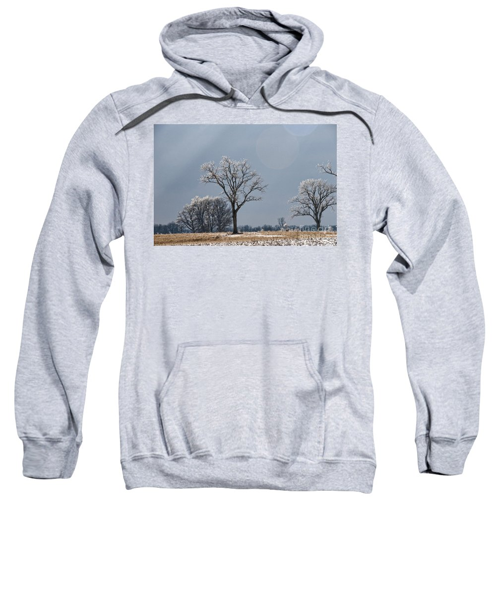 Iced Tree Sweatshirt featuring the photograph Iced Tree by David Arment