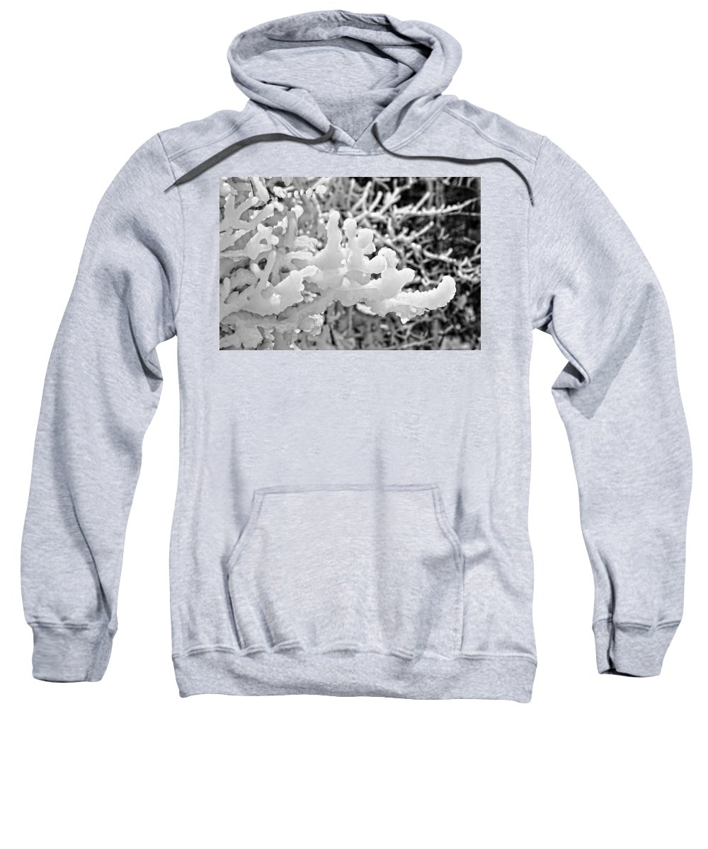 Lake Superior Sweatshirt featuring the photograph Icy Fingers by Kathryn Lund Johnson