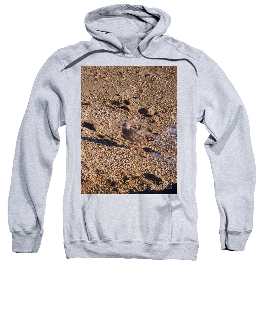 Gravel Sweatshirt featuring the photograph In The Stone Surf Gravel Cape May Nj by Eric Schiabor