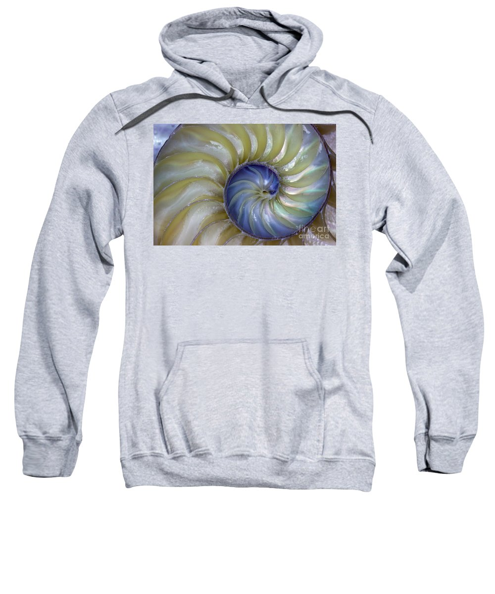 Nautilus Sweatshirt featuring the photograph Inside A Nautilus Shell by Tom Gari Gallery-Three-Photography