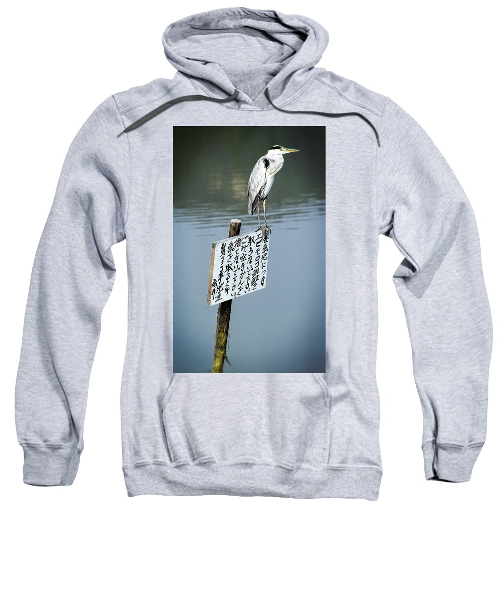 Japan Sweatshirt featuring the photograph Japanese Waterfowl - Kyoto Japan by Daniel Hagerman