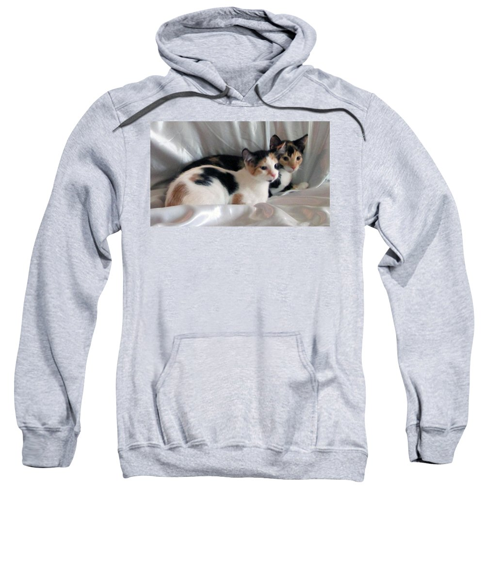 Sweatshirt featuring the photograph Jayd And Jazmine by Debi Singer
