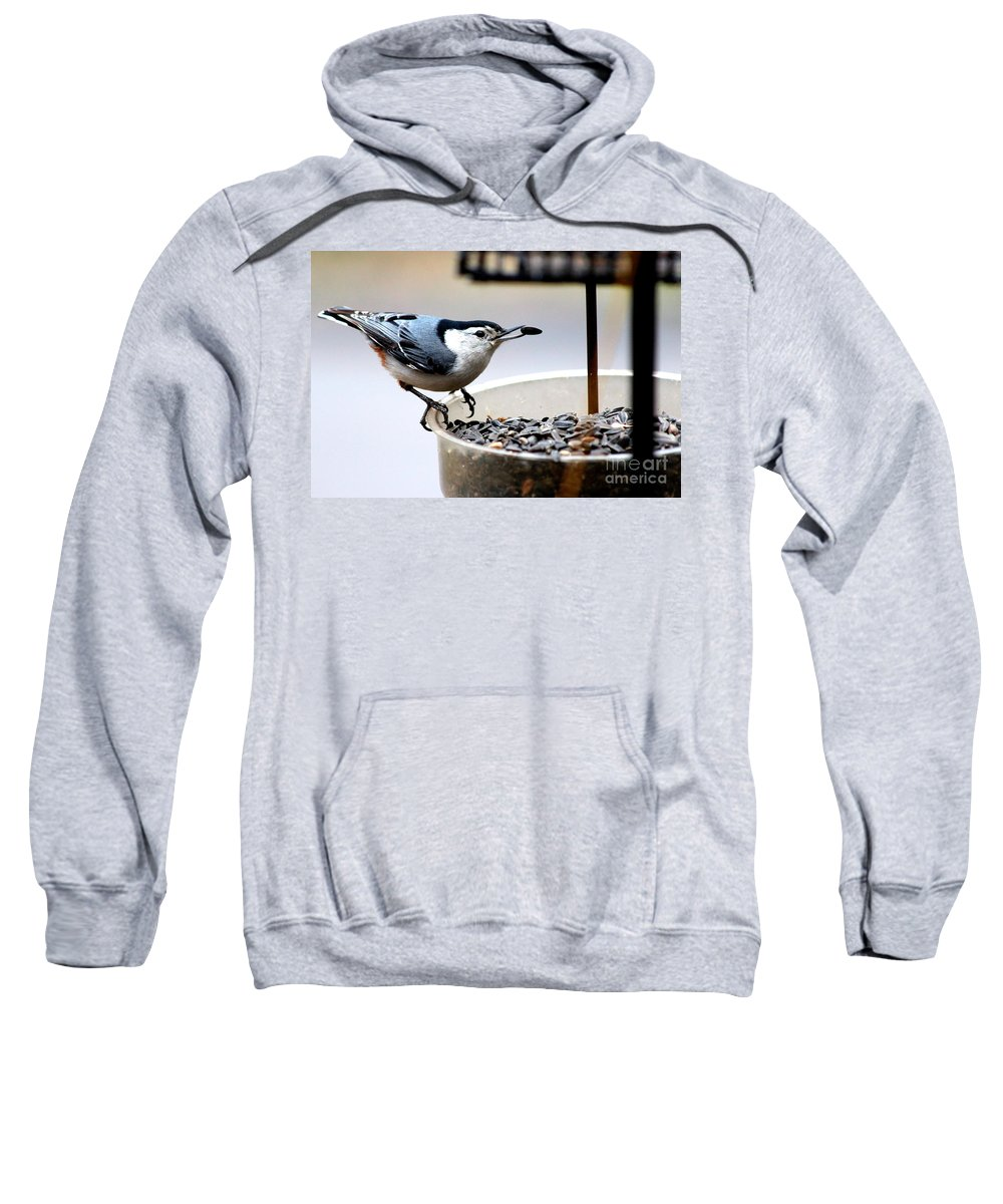 White Breasted Nuthatch Sweatshirt featuring the photograph Join Me For A Bite by Kathy White