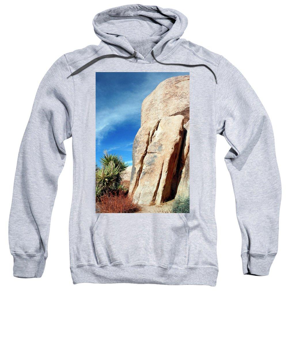 Joshua Tree Sweatshirt featuring the photograph Joshua Tree Morning Joshua Tree by William Dey