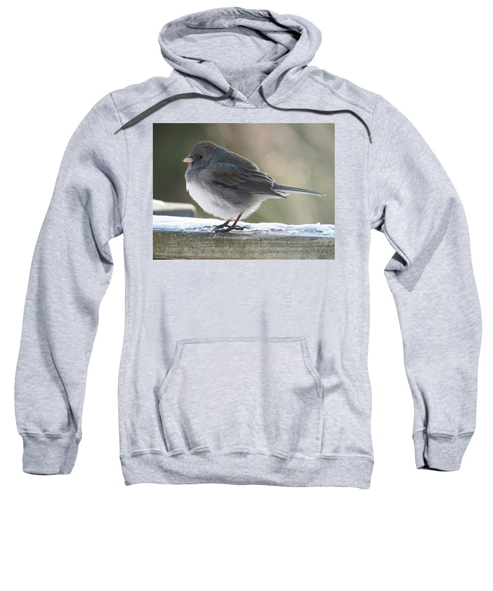 Junco Sweatshirt featuring the photograph Junco On Board by MTBobbins Photography