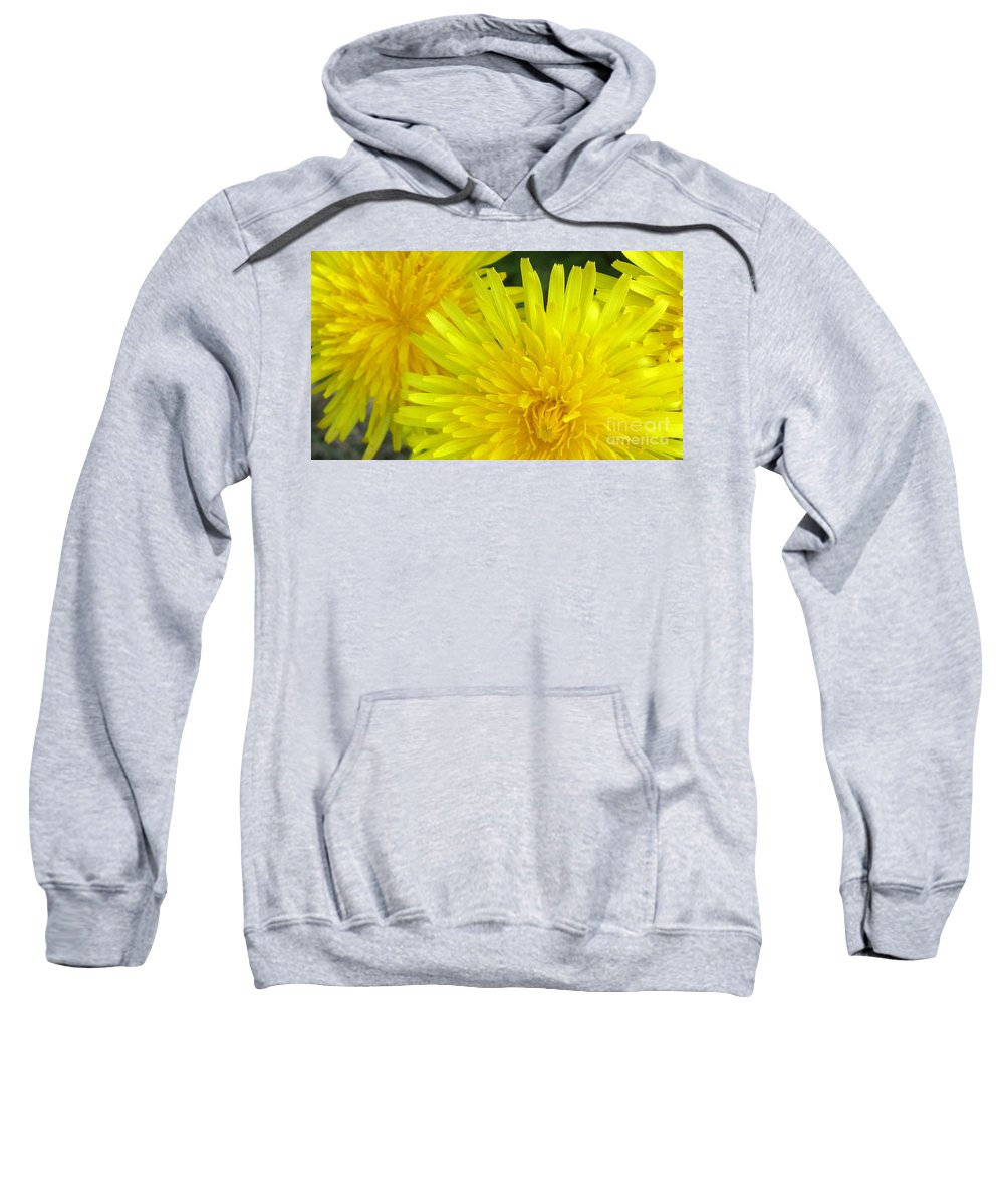 Nature Sweatshirt featuring the photograph Just Dandy by Janice Westerberg