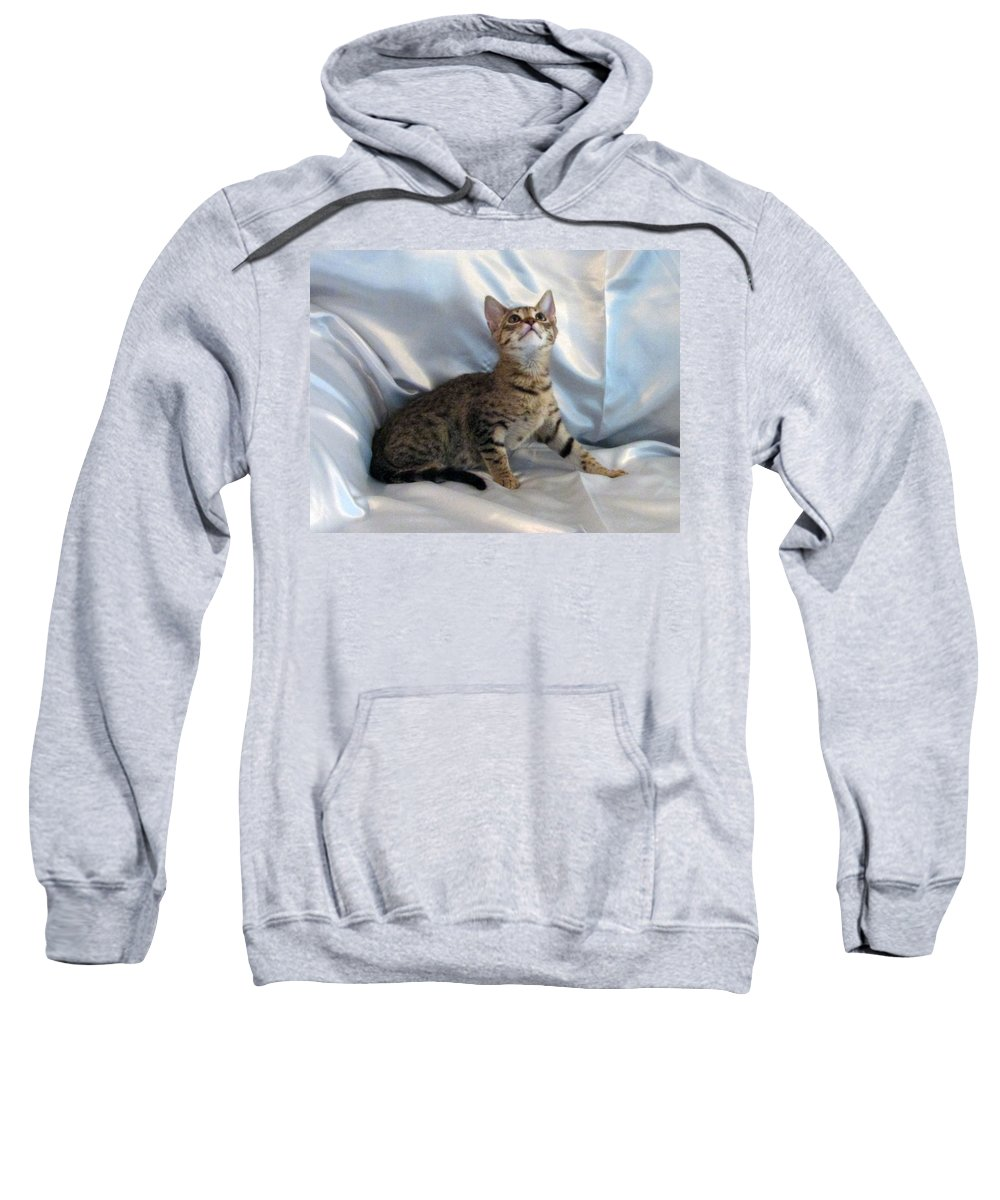 Sweatshirt featuring the photograph Kaitlyn by Debi Singer