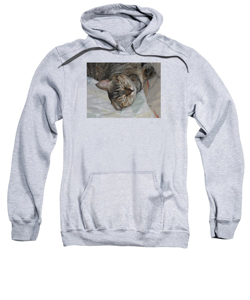Cats Sweatshirt featuring the photograph Lana by Donna Wilson