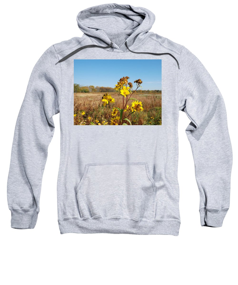 Flower Sweatshirt featuring the photograph Last Blooms Before Fall by Larry Ward