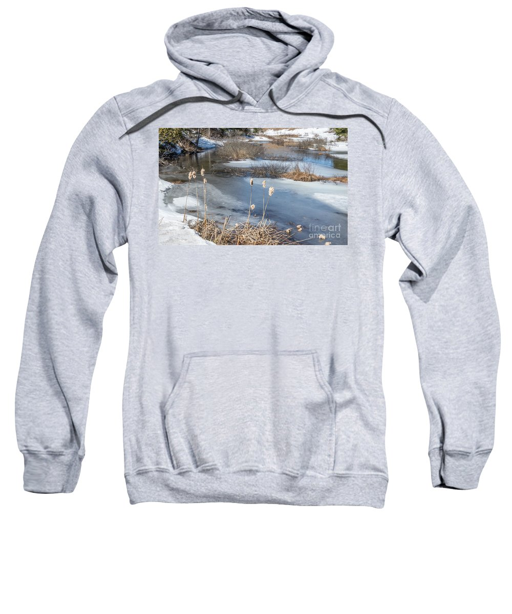 Winter Sweatshirt featuring the photograph Last Days Of Winter by Jola Martysz
