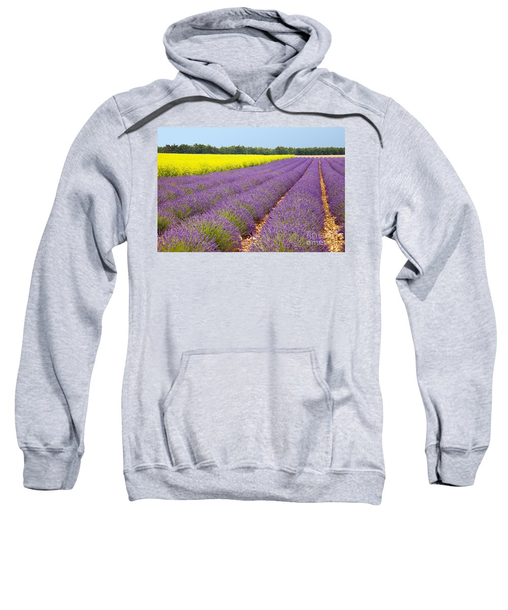 Lavender Sweatshirt featuring the photograph Lavender And Mustard by Brian Jannsen