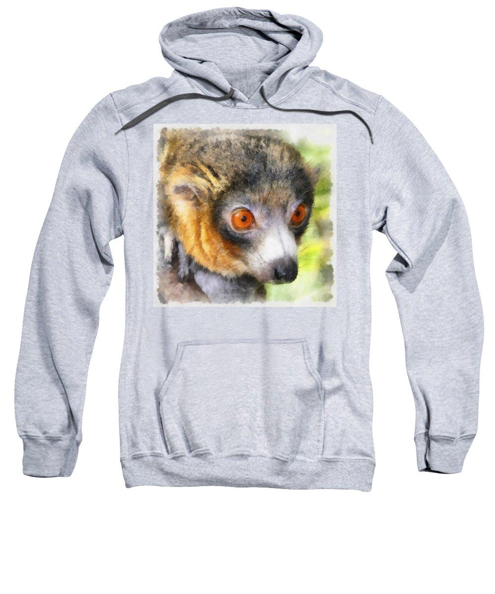 Aquarell Sweatshirt featuring the photograph Lemur 004 by Ingrid Smith-Johnsen