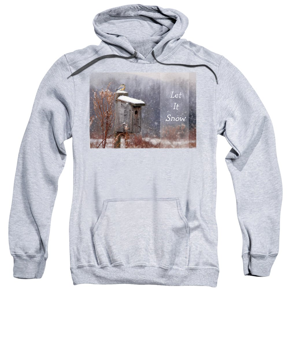 Snow Sweatshirt featuring the photograph Let It Snow - Bluebirds by Lori Deiter