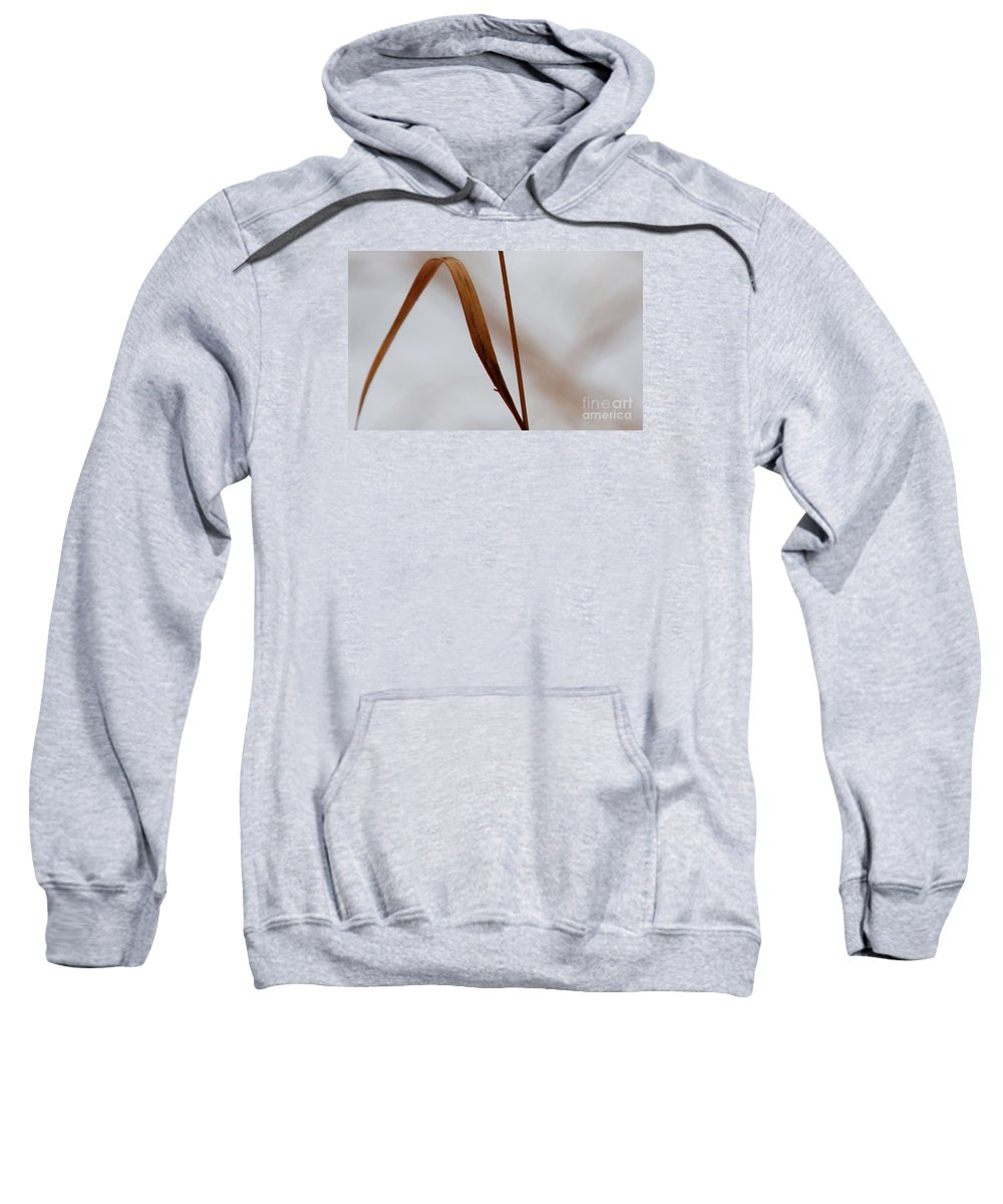 Abstract Sweatshirt featuring the photograph Life's Journey by Linda Shafer