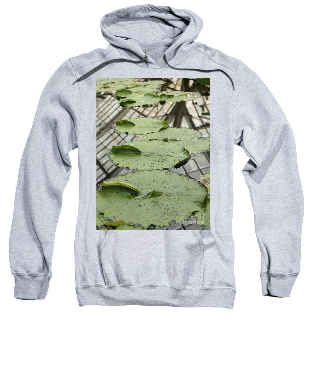Lily Pads Sweatshirt featuring the photograph Lily Pads With Reflection Of Conservatory Roof by Carol Groenen