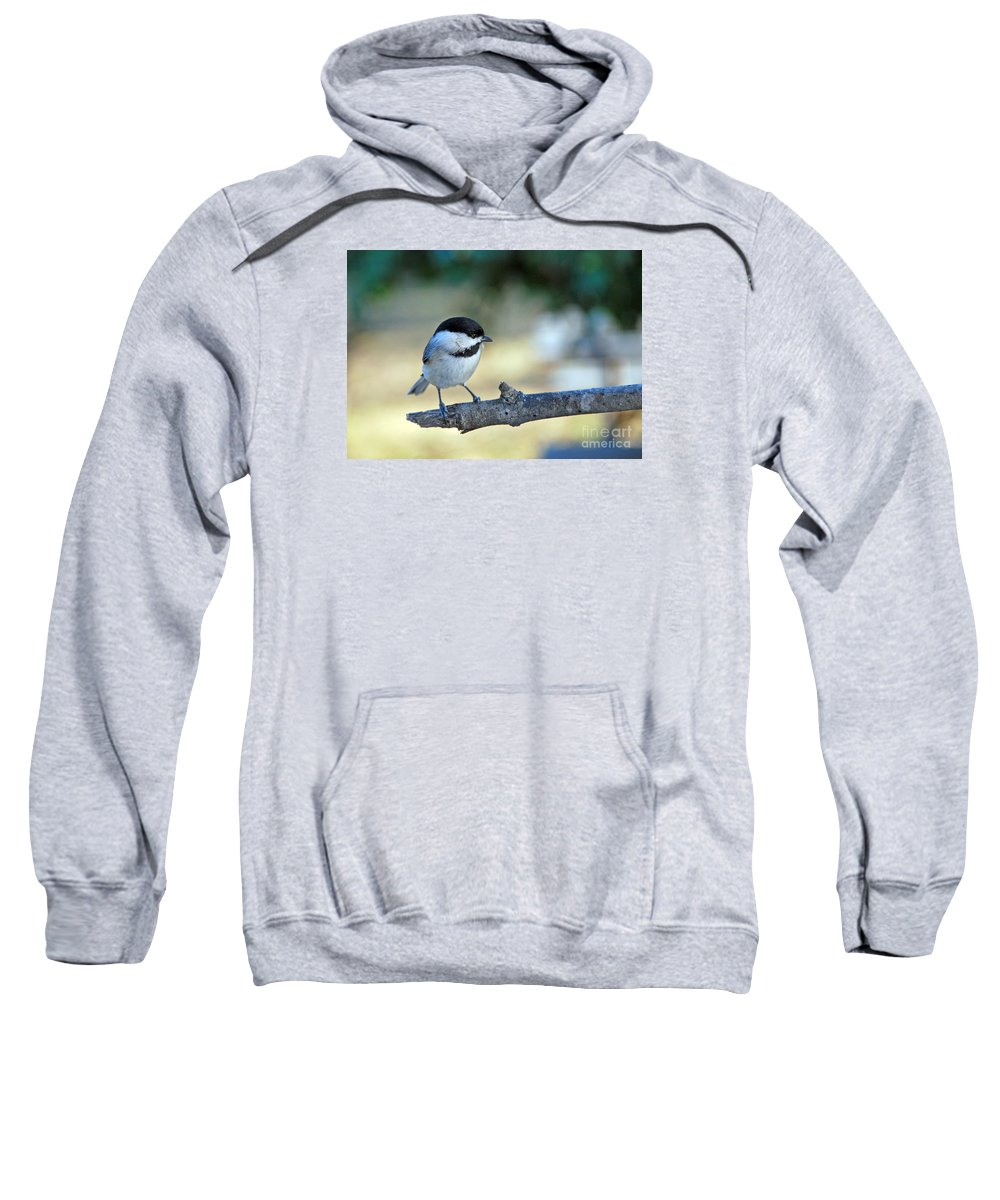 Names Of Birds Sweatshirt featuring the photograph Little Darlin by Skip Willits