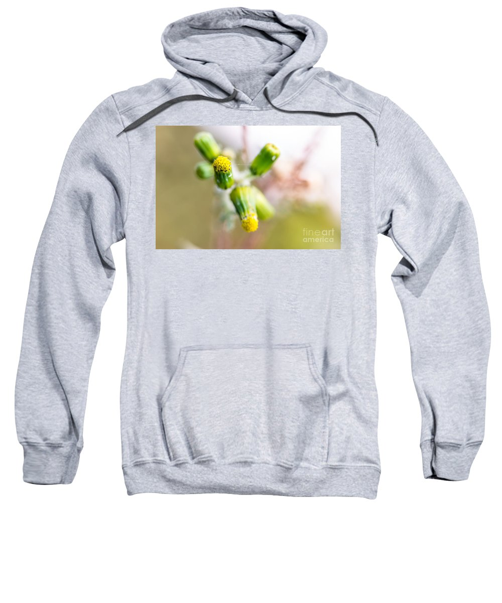Sweatshirt featuring the photograph Little Flower 03 by Edgar Laureano