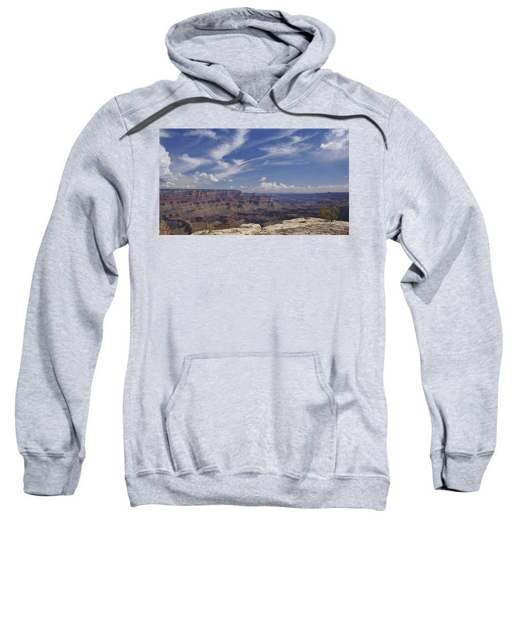 Pine Tree Sweatshirt featuring the photograph Little Tree...grand Canyon by Brian Kamprath