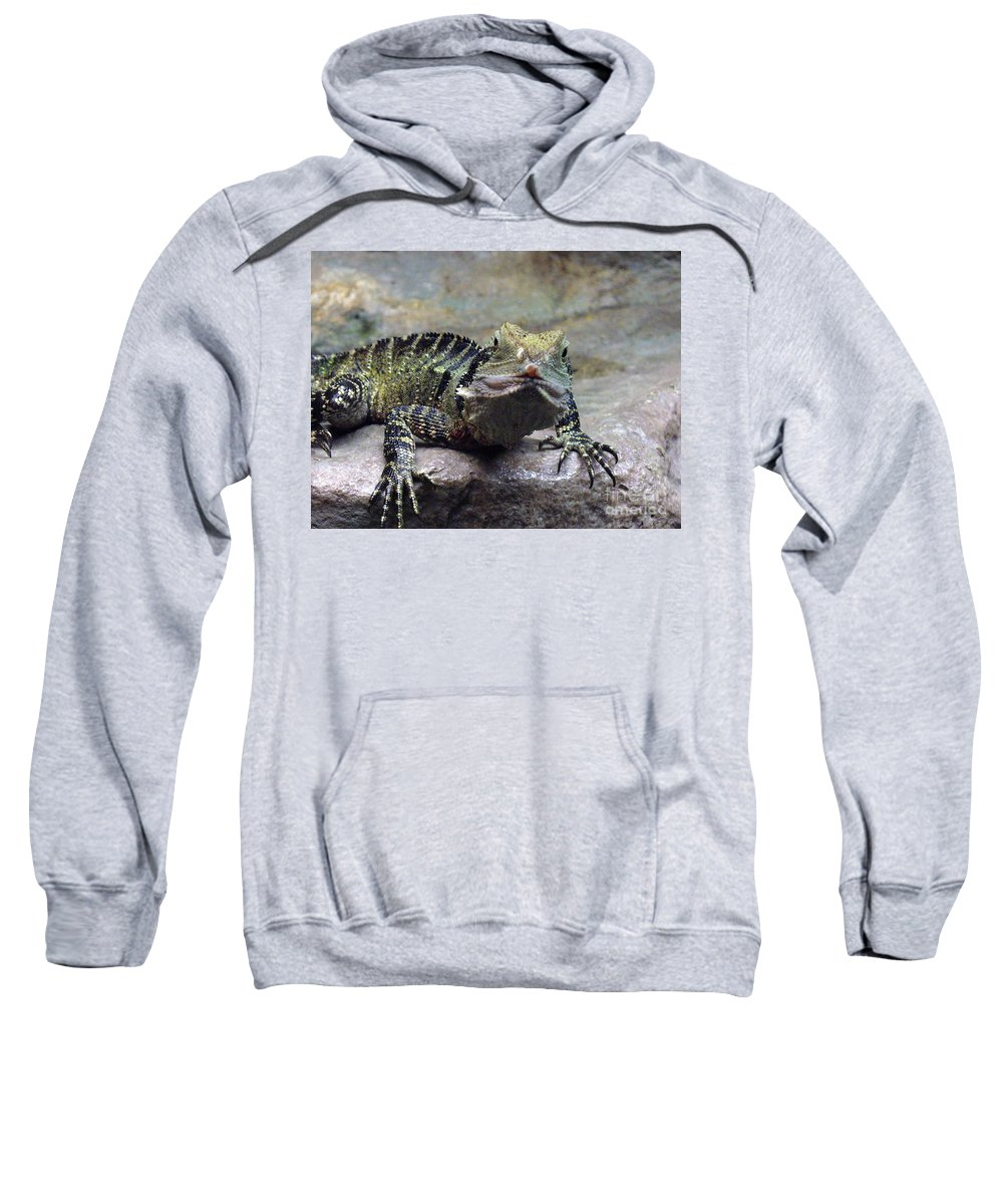 Reptiles Sweatshirt featuring the photograph Lizzie's Gaze by Lingfai Leung