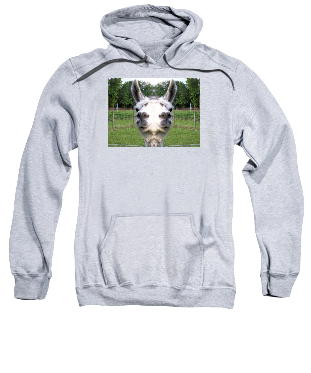Rare Sweatshirt featuring the photograph Llama Fun Head Games by Belinda Lee