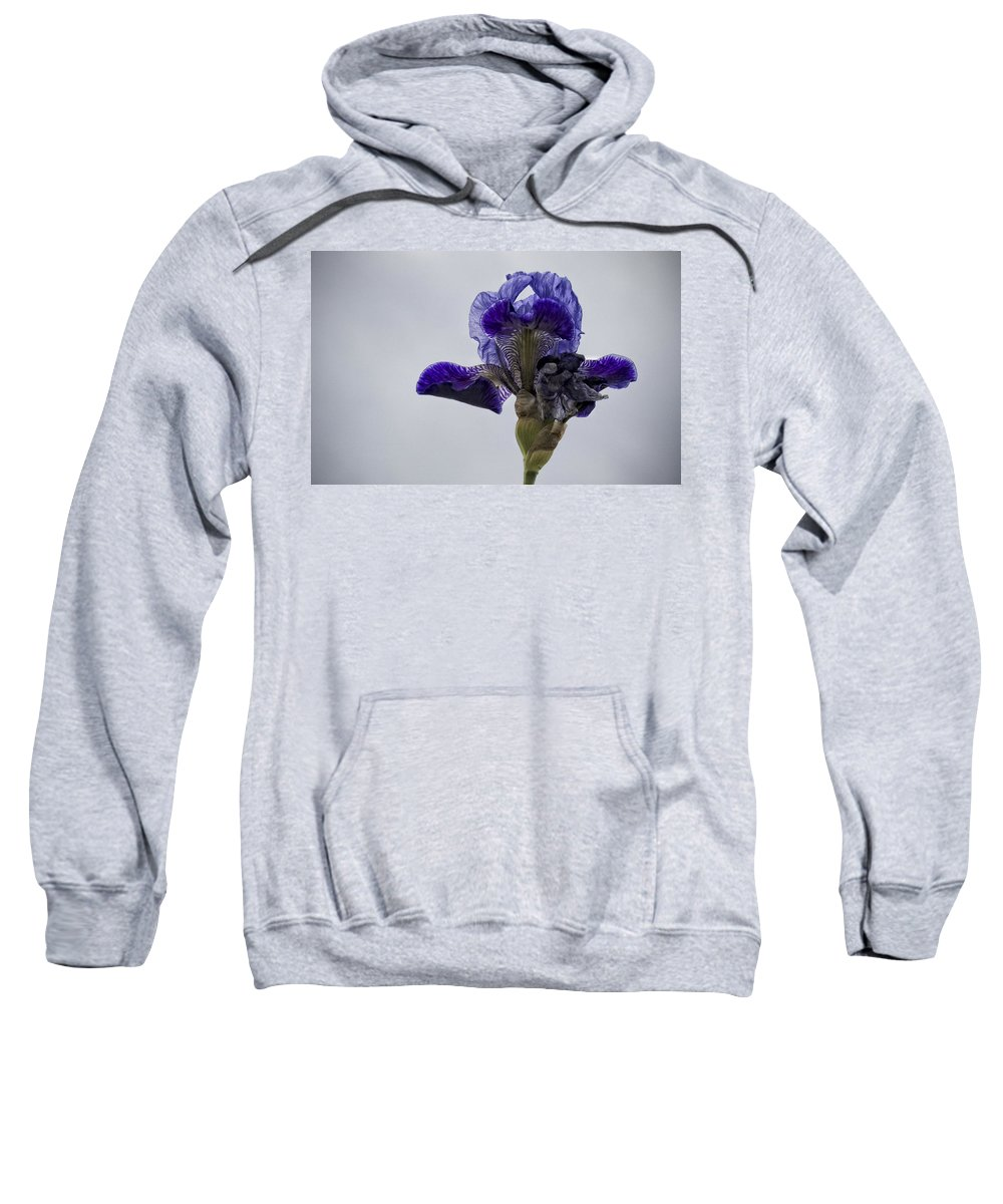 Iris Sweatshirt featuring the photograph Lone Iris by Ron White