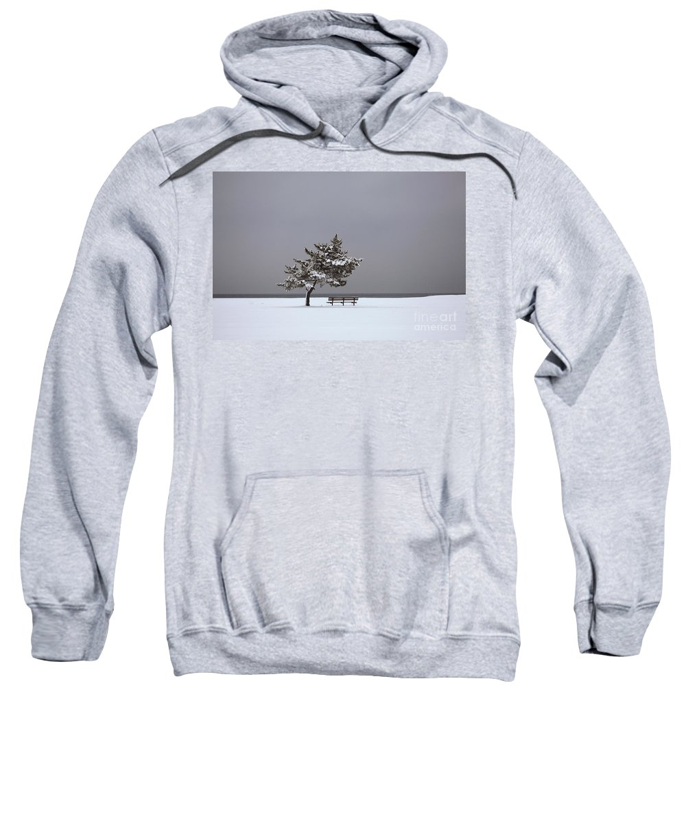 Winter Sweatshirt featuring the photograph Lonesome Winter by Karol Livote
