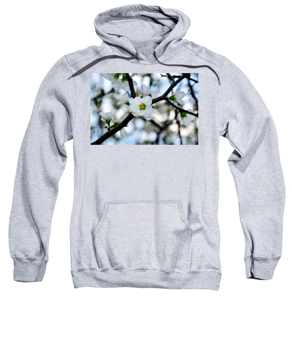 Photography Sweatshirt featuring the photograph Looking Through The Blossoms by Kaye Menner