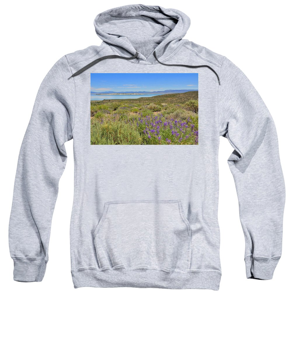 Mono Sweatshirt featuring the photograph Lupines At Mono Lake by Lynn Bauer