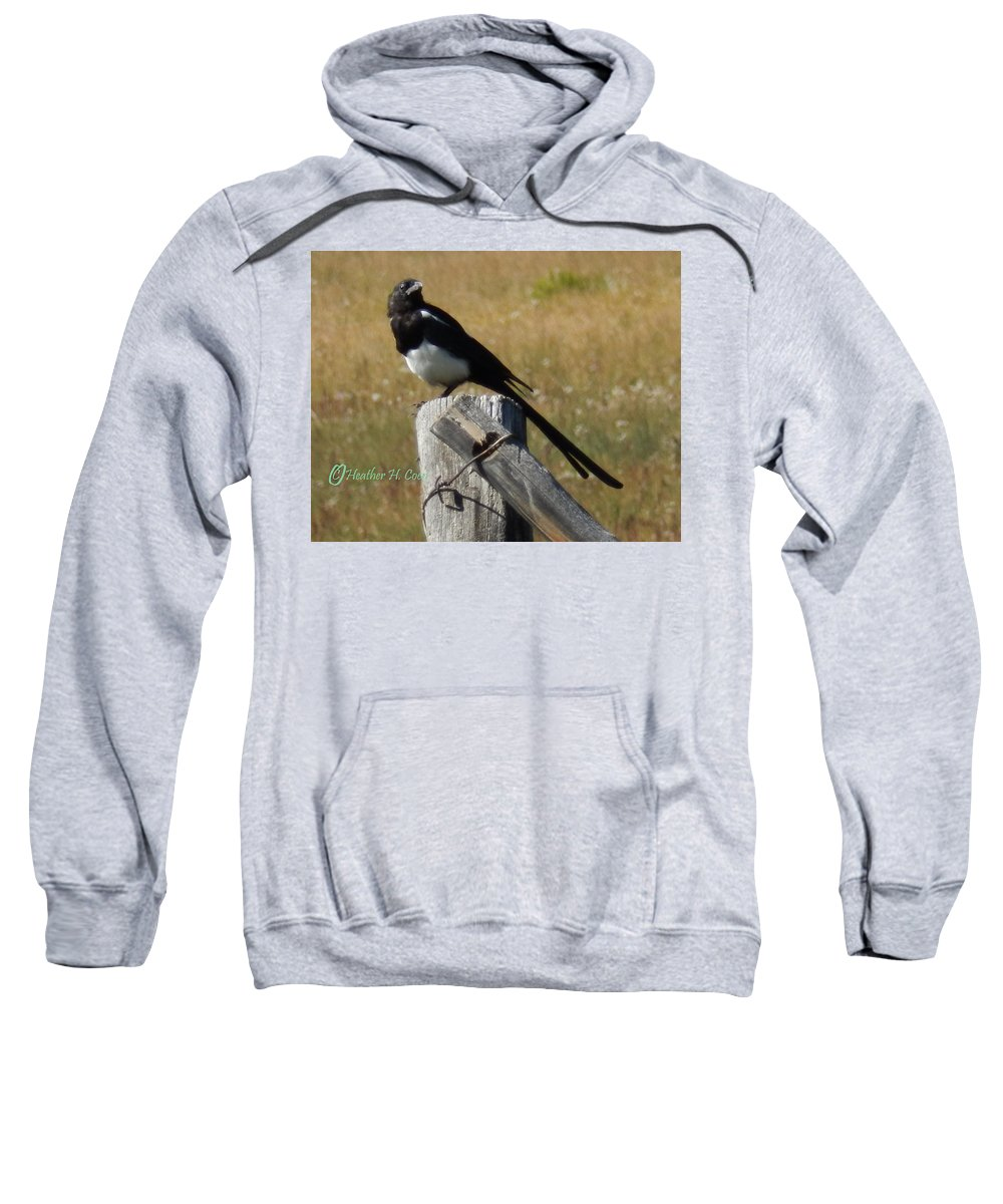 Magpie Sweatshirt featuring the photograph Magpie by Heather Coen