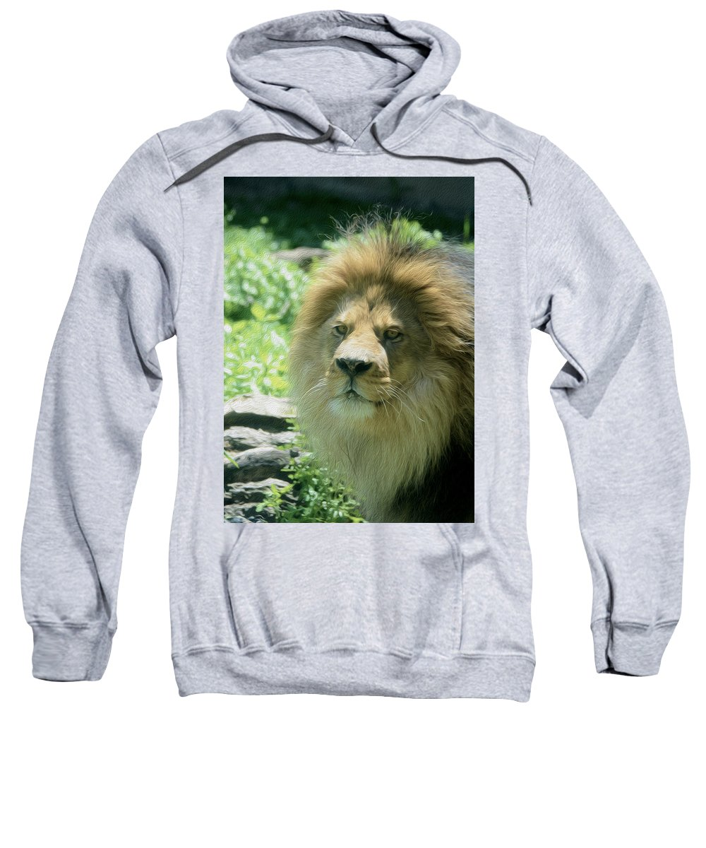 Male Lion Sweatshirt featuring the photograph Male Lion Up Close by Tracy Winter